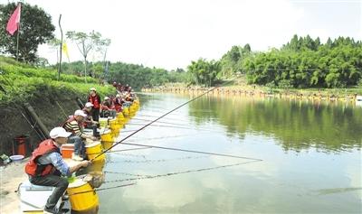 随着井研特色乡村旅游度假区总体规划,中国农民画乡,垂钓之乡,三青台